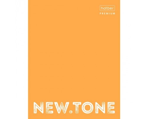 Папка на кольцах А5 NEWtone NEON Оранжевая